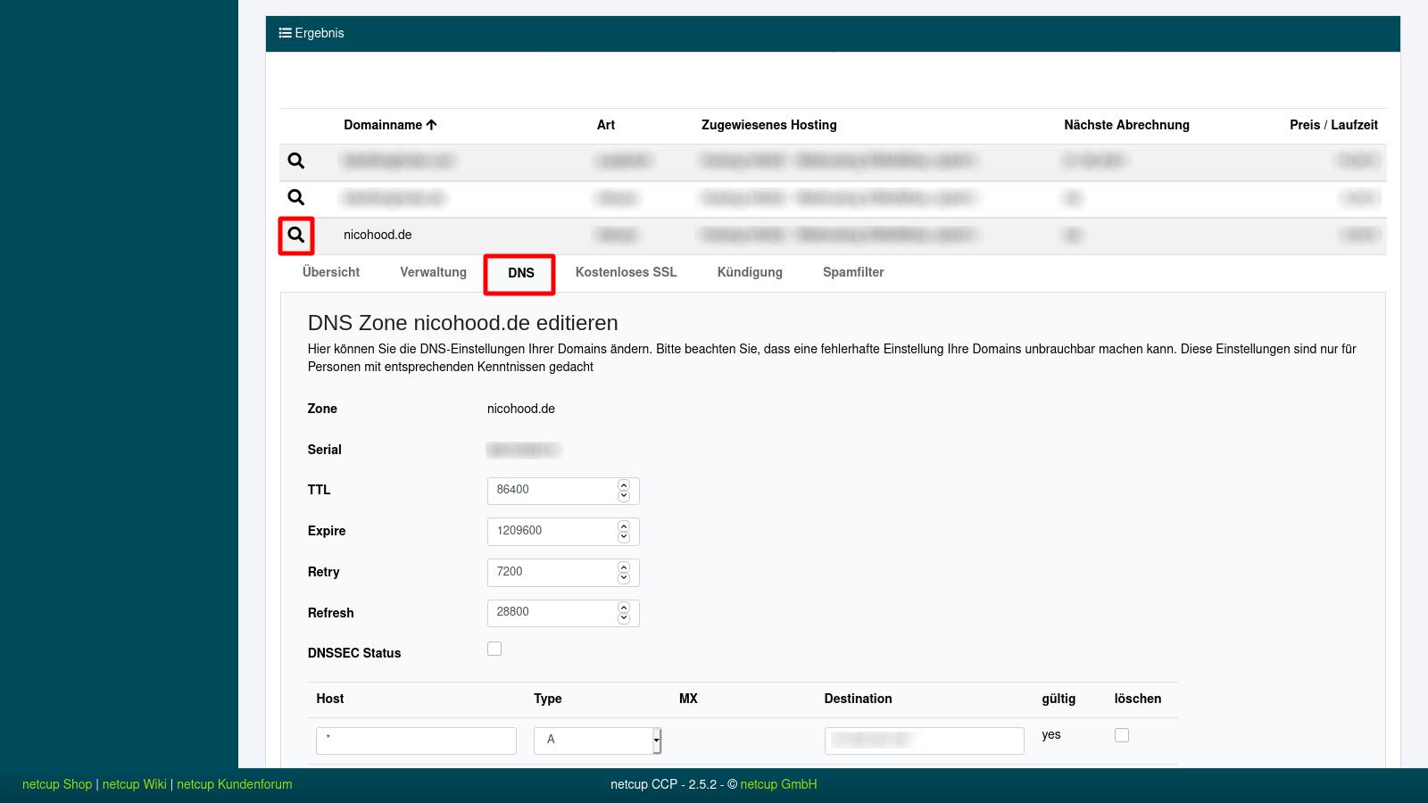 Netcup Customer Control Panel DNS Configuration