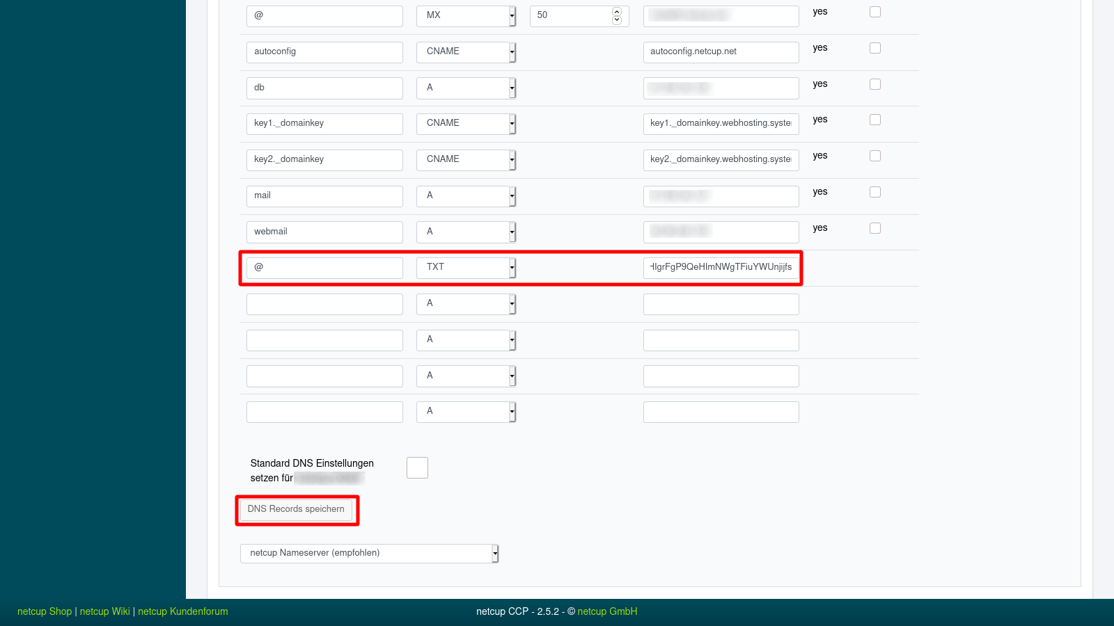 Netcup Customer Control Panel Add Google Site Verification TXT DNS Record